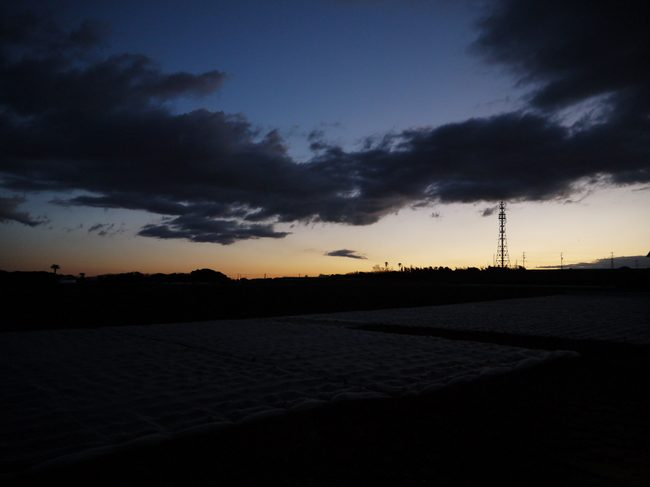 0626_ソレイユの丘分岐.JPG