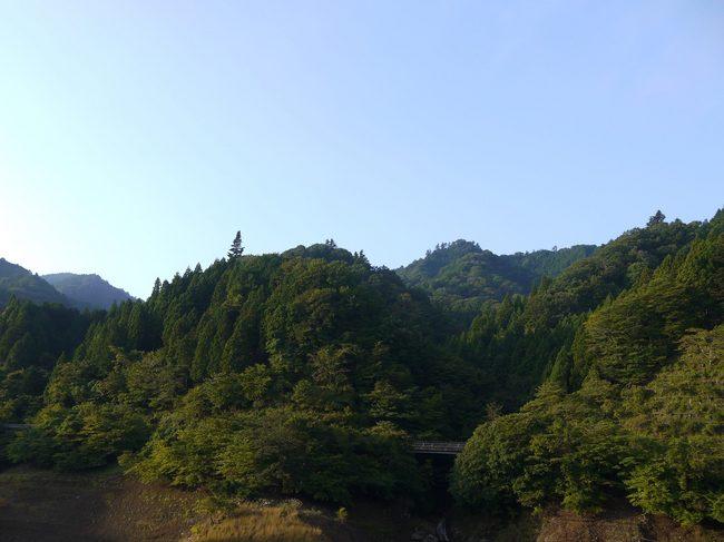 0659_宮ヶ瀬湖の緑.JPG