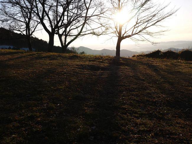0725_菜の花台の芝生.JPG