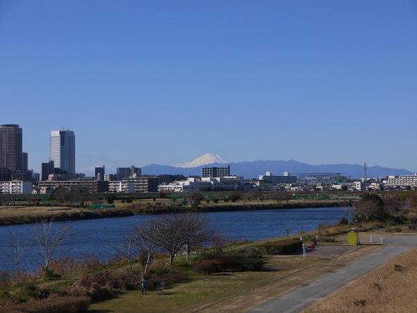 多摩サイと富士山_s.JPG